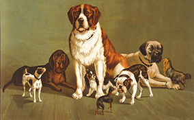 Vintage Dog Painting_Reduced